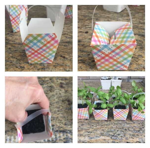 Mini Herb Favors To Spruce Up Your Spring Tablescape