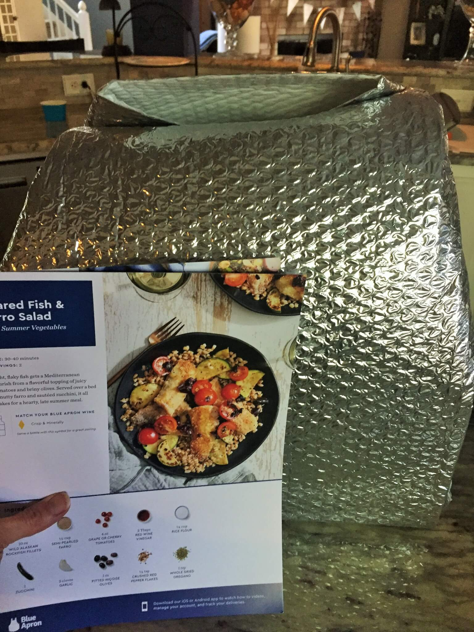 Blue Apron Meal Kit Insulated Bag with Recipe Cards