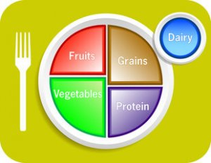 Daily breakdown of food groups - healthy plate