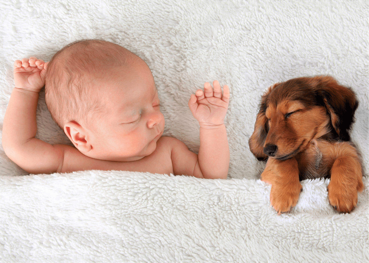 baby and puppy sleeping